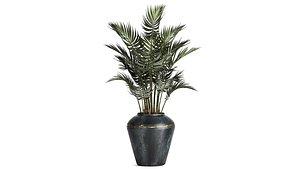 plants interior pots 3D model
