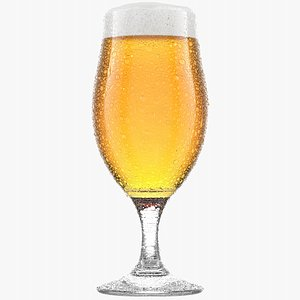 Beer Glass 1 3D model