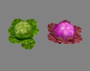 cauliflower flower vegetables 3D model