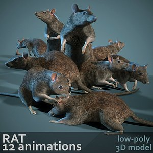 3D model Rat 12-animations Game ready props Low-poly 3D model
