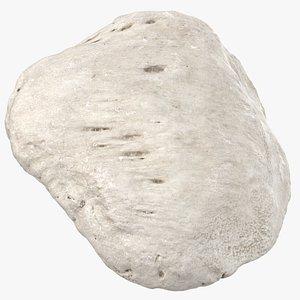 real human patella bone 3D