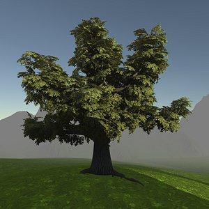 3D model Game ready model old oak