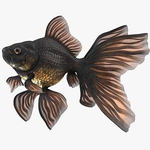 Black Moor Goldfish Swimming Pose 3D