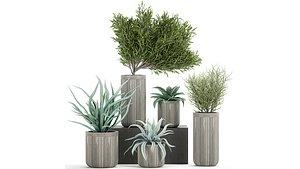 3D pot plants concrete