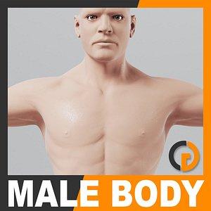 3d model realistic human male body