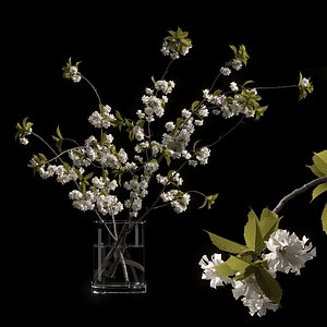 3D vase branches cherry model