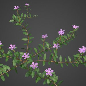 plants - pbr 2021 3D model