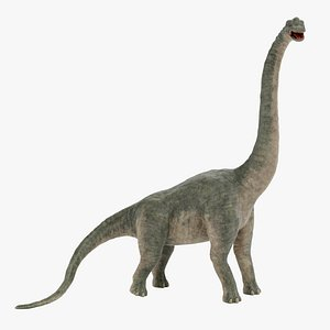 3D model Brachiosaurus Rigged