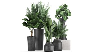 3D plants decorative flowerpots