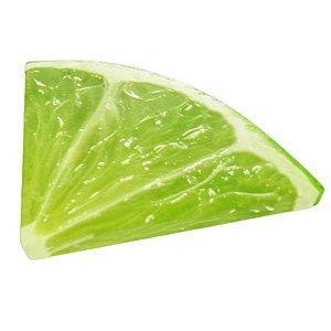 Lime slice quarter model