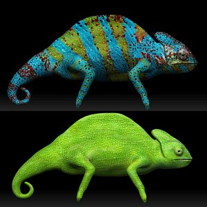 Color Switch Chameleon Collection 3D model