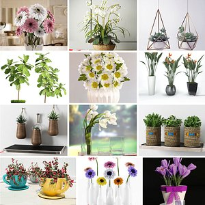 3D Flowers and plants collection model