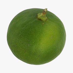 3D lime small model