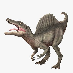 Spinosaurus - Rigged and Animated 3D