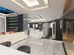 Air Conditioner Store 3D