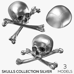 Pirate Skulls and Bones Collection Silver - 3 models 3D model