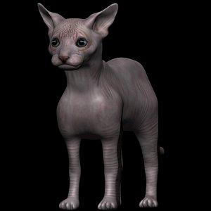 3D fully rigged sphynx cat