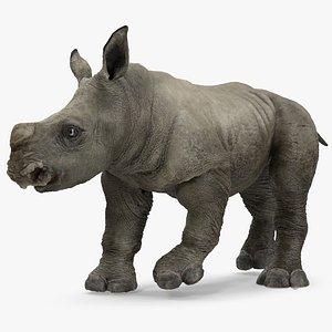 3D baby rhino rigged