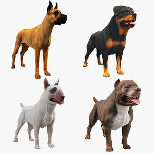 3D model Dogs Collections VrayFur