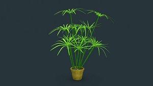 3D Cyperus