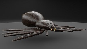SIMPLE SPIDER 3D model