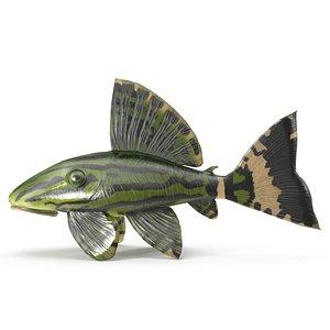 Catfish 3D