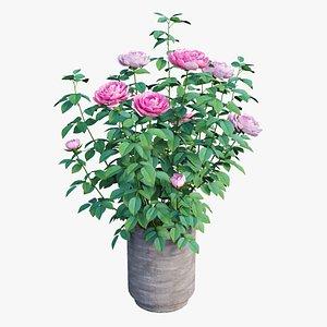 plant pot 02 corona 3D model
