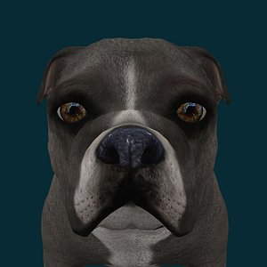 0047 Dog 3D model