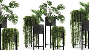 Houseplants in a black pot for the interior 911 model