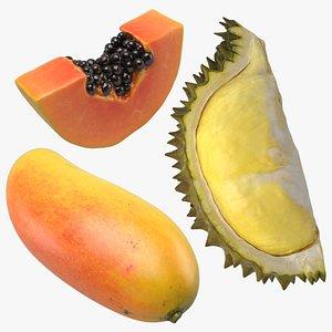 3D Tropical Fruit Collection 01 model