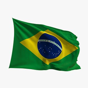 Realistic Animated Flag - Microtexture Rigged - Put your own texture - Def Brazil 3D model