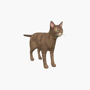 3D Abyssinian Cat model