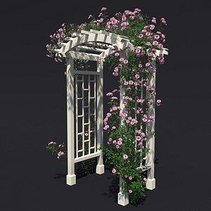 3D model arch 3 climbing rose
