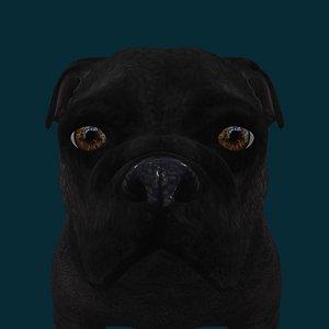 3D 0043 Dog