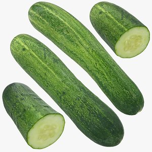 3D model food cucumber fruit