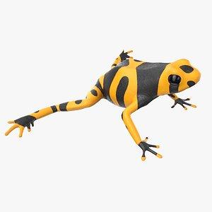 dart frog yellow model