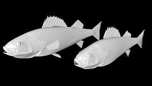 3D walleye fish model