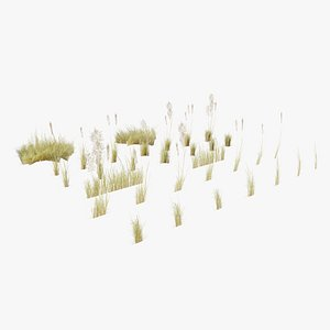 3D model Low Poly Bent Grass Dry Pack