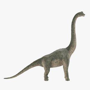 Brachiosaurus 3D model