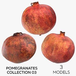 Pomegranates Collection 03 - 3 models 3D