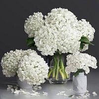 Hydrangea and peony Bouquet Flower Vase decorative set