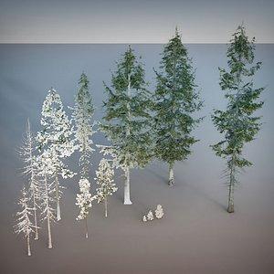 Fir Trees 13 plus 13 photoscanned model