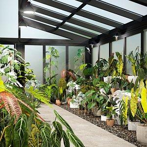 Bundle 15 Interior Plants 3D model