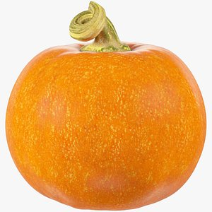 Pumpkin V6 3D model