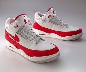 Sneaker Nike Air Jordan 3 3D model