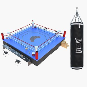 boxing ring punching bag 3D model