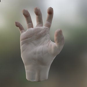3D model 3D Animated Rigged Hand