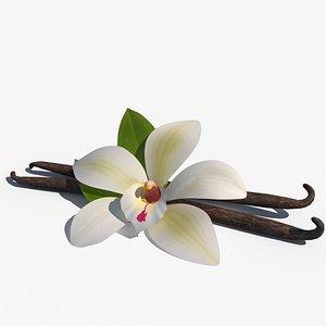 3D model Vanilla Flower