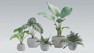 3D plant pack