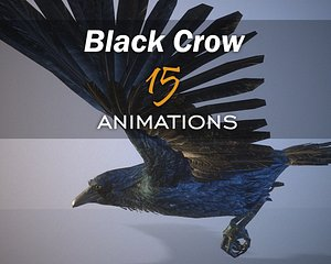 crow 15 animations 3D